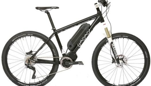 E-Woodrocker E-MTB von FXX Cycles